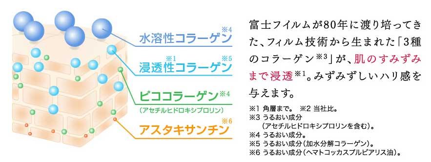 3種のコラーゲン